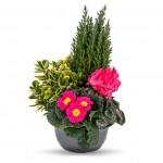 entretien-fleurissement-tombe-Coeur
