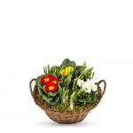 tombes-entretien-fleurissement-memoire